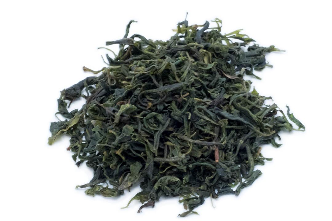 小葉苦丁茶